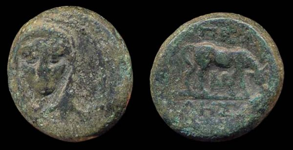 Ancient Greek bronze coin of Pella, Macedonia