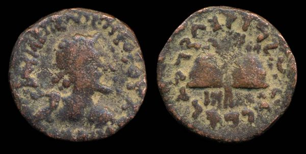 Indo-Greek bronze coin of king Antialkidas with caps & palms