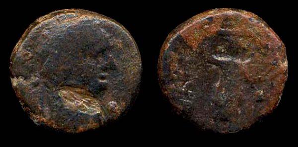 JUDAEA, ASCALON, Domitian, 81-96 AD, bronze