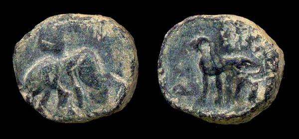 PUSHKALAVATI, c.185-160 BC, round bronze karshapana,